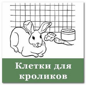 клетки для выращивания кроликов