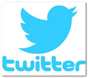 Как заработать на Twittere