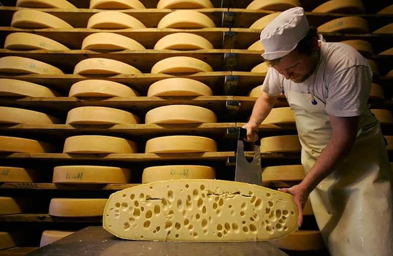 Производство сыра как бизнес идея