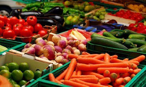 Организация овощехранилища