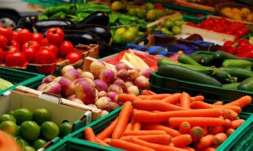 Бизнес на хранении овощей (овощехранилище)