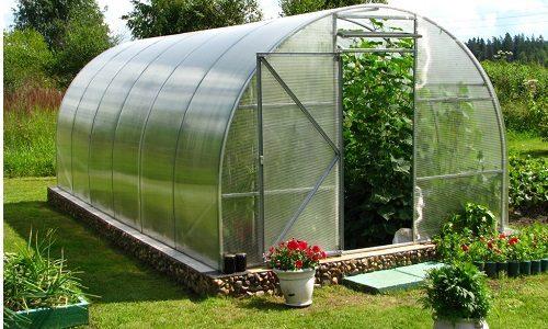 Организация теплицы для выращивания