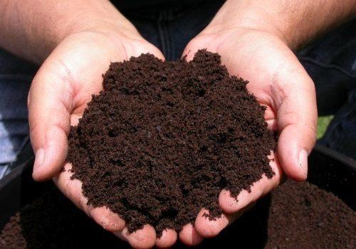 Выбор грунта для выращивания цветов