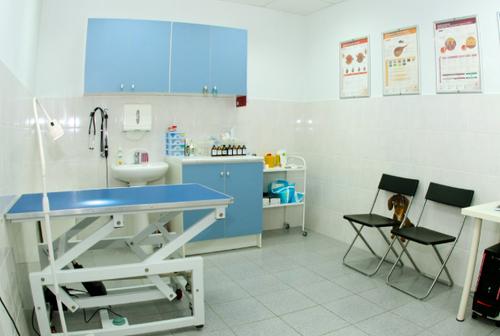 Помещение для ветеринарной клиники