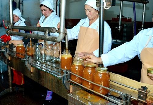 Персонал в производстве консервированных овощей