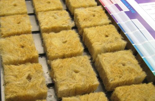 Бизнес на производстве минеральной ваты