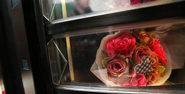 Бизнес идея — автомат по продаже живых цветов