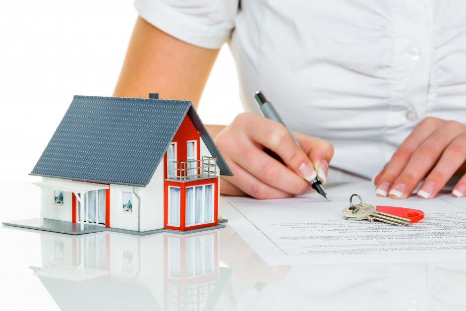 Сдача в аренду квартир в новостройке: что нужно знать начинающему арендодателю