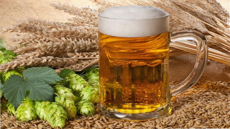 oborudovanie dlya proizvodstva piva - Производство пива 150% в неделю