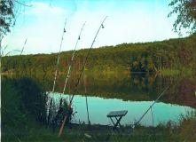 100401831223302929 fotka - Бизнес план платной рыбалки