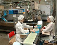 240505801006 s - Бизнес план производства мороженого