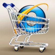 35766548n0810 24 5b(1) - Бизнес план интернет магазина